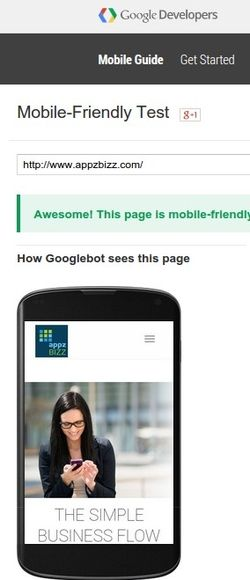 Caption of our website being diagnosed by Google's mobile-friendly tester